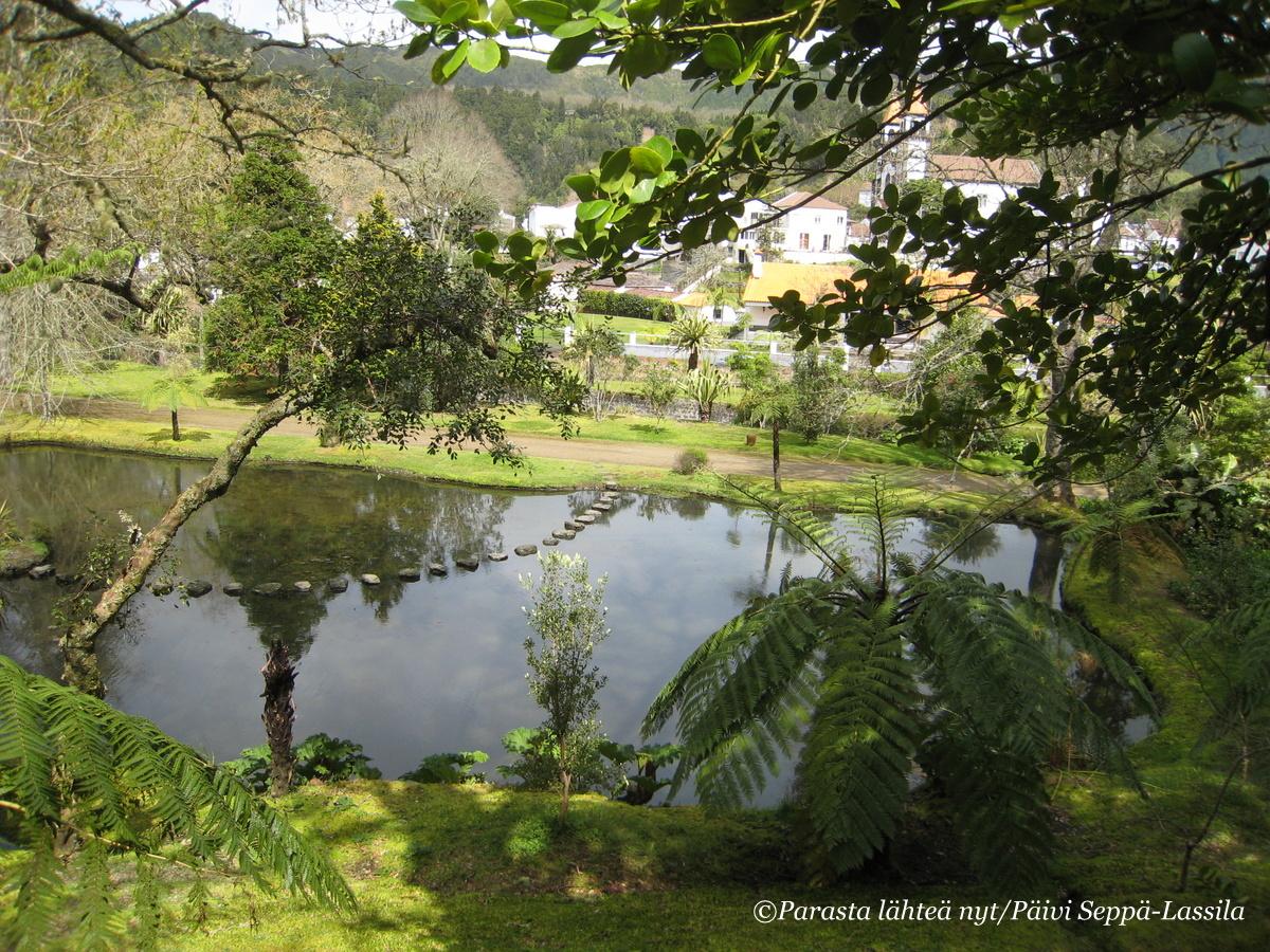 Terra Nostran kasvitieteellisessä puutarhassa Azoreilla vihreällä oli monia sävyjä - Fifty shades of green.