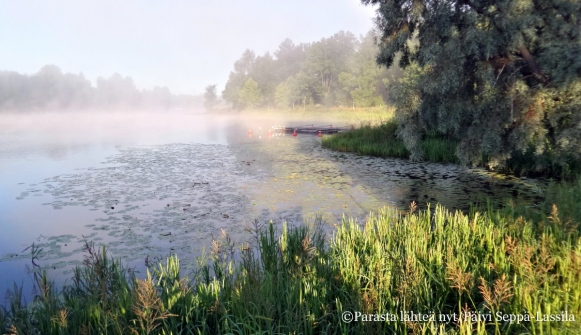 Aulangonjärvi elokuun aamusumussa.
