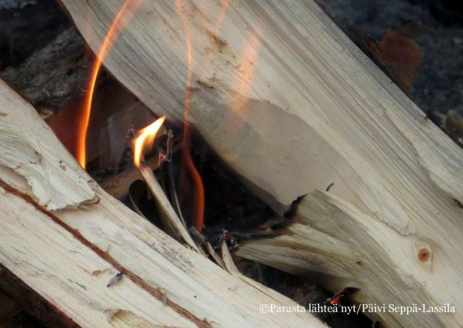 Tauolla tehtiin nuotio, jossa keitettiin pannukahvit ja paistettiin makkaraa.
