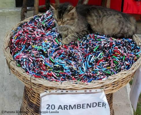 Eurolla sai 20 rannekorua. Kissa ei varmaankaan kuulunut kauppaan.
