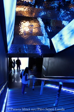 Akvaario sijaitsee merimuseon pohjakerroksessa. Sinne pääsee myös hissillä.