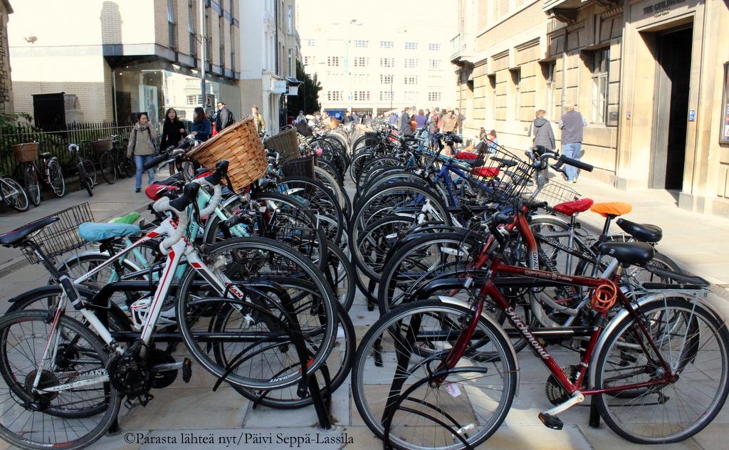 Cambridgessa yliopistoväki ja muut kaupunkilaiset ovat ahkeria pyöräilijöitä.