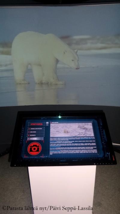 Tiedekeskus kertoo jääkarhujen elämästä muuttuvissa olosuhteissa.