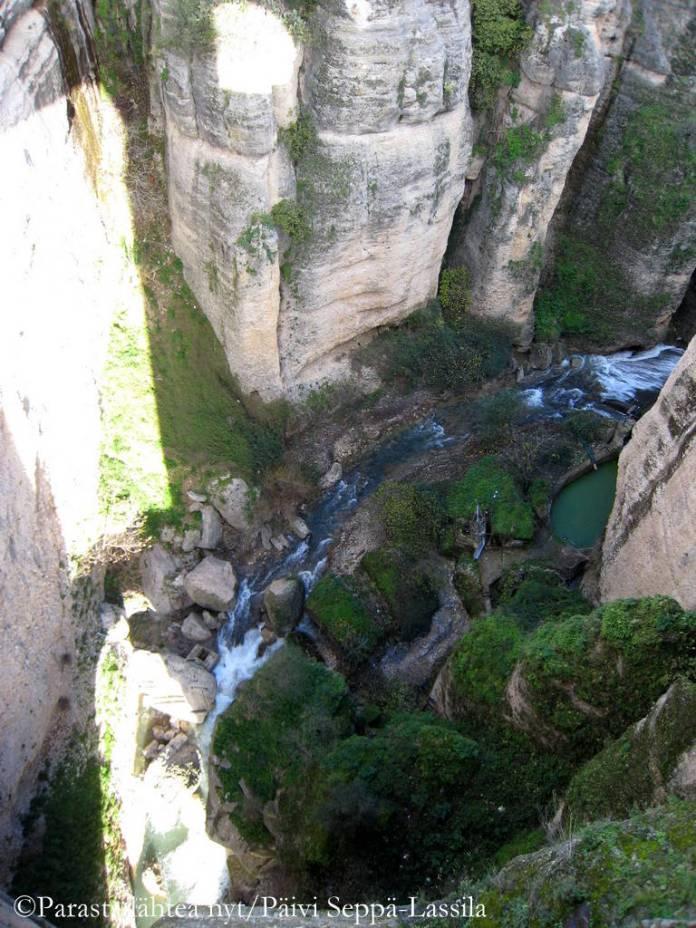 El Tajo -rotkossa virtaa Guadalevín-joki.