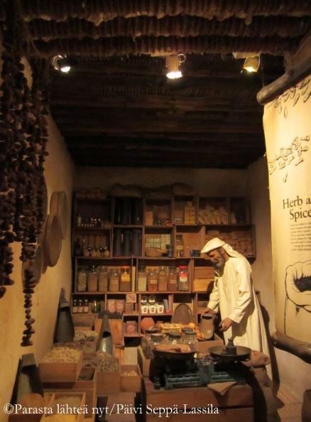 Dubain museosta.
