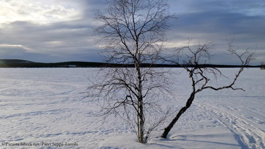 80. Jerisjärvi, Muonio.
