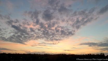 Aamupilviä Petreliuksessa, Turussa.