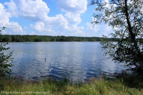 Menkijärvi, Alajärvi.