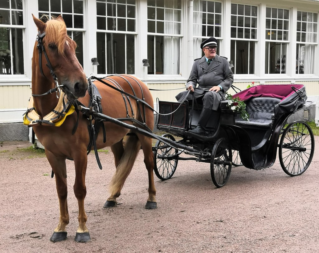 Hevonen, kiesit tai kärryt, kuljettaja