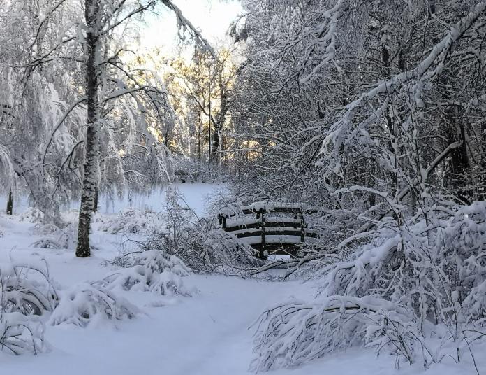 Lumista puistomaisemaa, keskellä kaarisilta