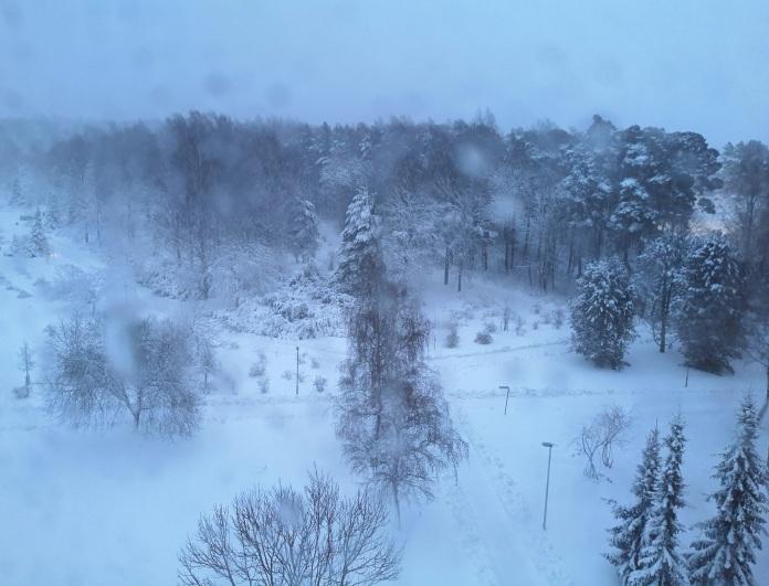 Lumen peittämä Tähkäpuisto kuvattuna ylhäältäpäin